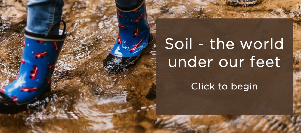Soil - the world under our feet Click to begin
