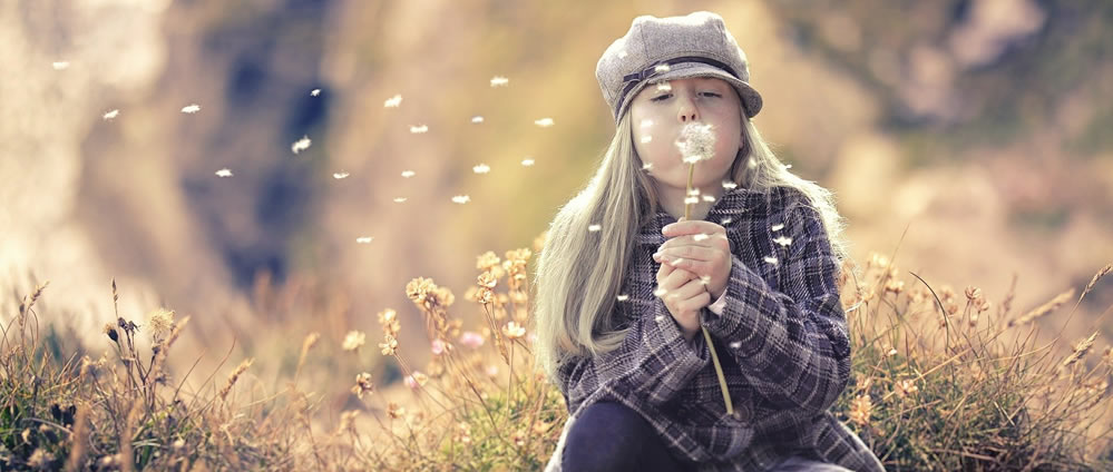 Girl blowing the clock of a dandelion with seed catching the wind