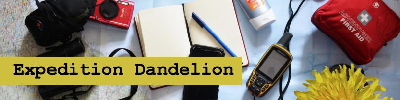 Expeditin Dandelion